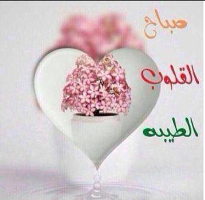 صباح القلوب الطيبة 300x292 صور صباح الخير أسعد الله صباحكم بكل خير