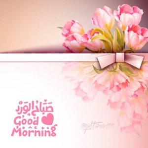 صباح الورد روعه 300x300 صور صباح الخير أسعد الله صباحكم بكل خير