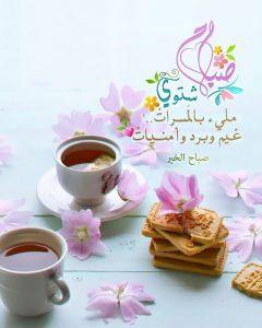 صباح شتوي 240x300 صور صباح الخير أسعد الله صباحكم بكل خير