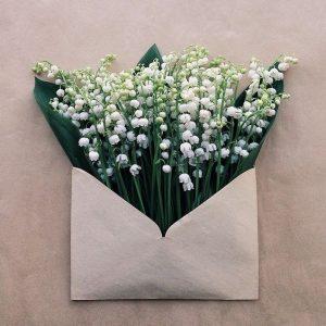 صور باقة ورد بيضاء 300x300 صور ورد باقات ورود جميلة فيس بوك