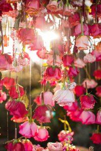 صور ورد بلدي 200x300 صور ورد باقات ورود جميلة فيس بوك
