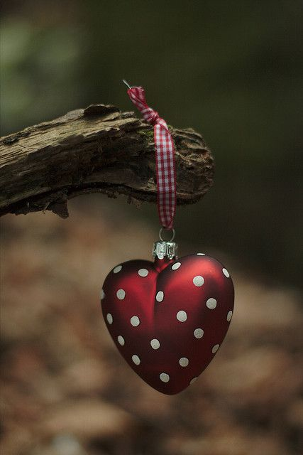 قلب جديد صور قلوب رومانسية للفيسبوك و للتصميم غاية الروعة