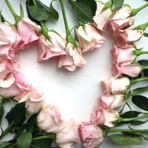 قلب ورد 300x300 صور ورد باقات ورود جميلة فيس بوك