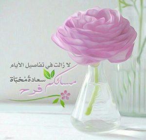 مساءكم سعادة 300x289 صور مساء الخير الفل الورد للاصدقاء والاحباب