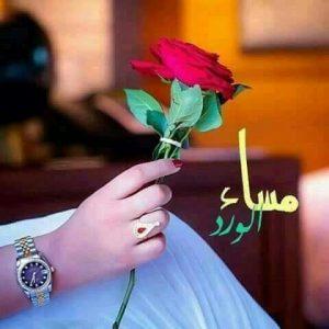 مساء الورد رومانسية 300x300 صور مساء الخير الفل الورد للاصدقاء والاحباب
