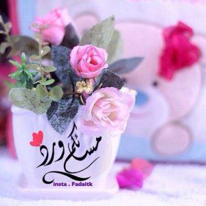 مسائكم ورد 300x300 صور مساء الخير الفل الورد للاصدقاء والاحباب